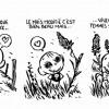 Mickael Roux. Tim «strip trangénique»
