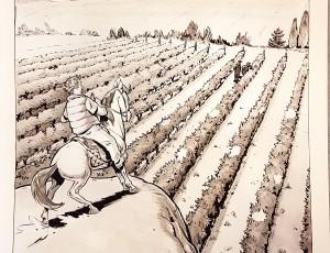 Boris Guilloteau. Vignes